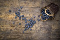 Blueberries and wicker basket — Stock Photo