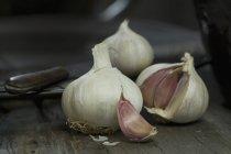 Bulbi di aglio e chiodi di garofano — Foto stock
