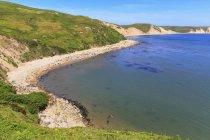 USA, California, Marin County, Point Reyes National Seashore, View to beach with sea elephants — Fotografia de Stock