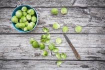 Brussels Sprouts in blue bowl — Stock Photo