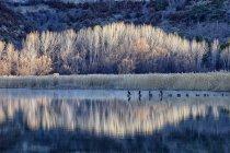 España, Cuenca, Lagoons of Jucar river near Una village - foto de stock