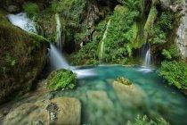 Espagne, Urbasa y Andia Natural Park, rivière Urederra qui coule entre les arbres — Photo de stock