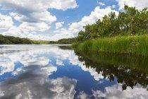 Ecuador, Amazon River region, Clouds reflected in Lake Pilchicocha — Stock Photo