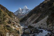Nepal, Khumbu, Everest region, Pangboche, trekkers and yaks on the Everest Trail with Ama Dablam — Stock Photo