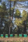 Greece, green beehives, trees in background — Stock Photo