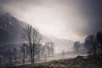 Alemania, Baviera, Ramsau, paisaje rural durante el día - foto de stock