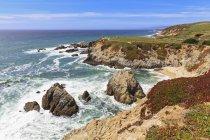États-Unis, Californie, côte du Pacifique, comté de Sonoma, Sonoma Coast State Beach, Bodega Head — Photo de stock
