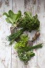 Herbes de sauce verte de Francfort et mezzaluna — Photo de stock