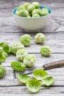 Крупный план зеленой брюссельской капусты на дереве — стоковое фото