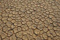 Afrika, Namibia, Sossusvlei, Dead Vlei Bruchfläche ein Salz und Ton schwenken — Stockfoto