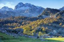 Espagne, automne au Parc National Picos de Europa — Photo de stock