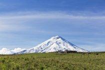 Südamerika, Ecuador, Anden, Vulkan Cotopaxi und Holz Bauernhof — Stockfoto