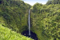 États-Unis, Hawaï, Big Island, Honomu, Akaka Falls — Photo de stock