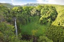 Соединенные Штаты Америки, Hawaii, Maui, Haleakala National Park, Makahiku Falls — стоковое фото