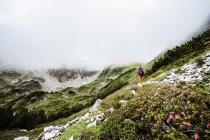Austria, Altenmarkt-Zauchensee, Low Tauern, young woman hiking — Stock Photo