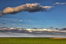Espanha, província de Zamora, campo de trigo e linhas eléctricas sobre a relva — Fotografia de Stock