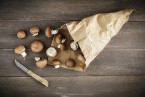 Fresh mushrooms in paper bag — Stock Photo