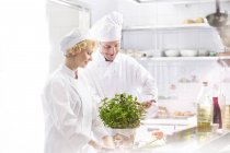 Two chefs in kitchen preparing food — Stock Photo