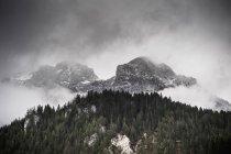 Forêts et montagnes dans les nuages, Ramsau, Bavière, Allemagne — Photo de stock