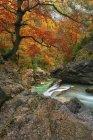 Живописный вид на реку Анисло в дневное время, Национальный парк Ордеса, Испания — стоковое фото