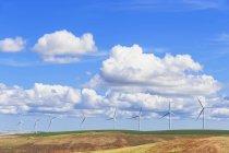 EUA, Idaho, Palouse, parque eólico em campos de grãos e céu nublado — Fotografia de Stock