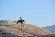 США, штат Вайоминг, пастушка, езда в бесплодные земли — стоковое фото