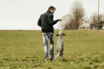 Man exercising with dog on meadow — Stock Photo