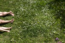 Ноги трьох людей, що лежать в лузі весна — стокове фото