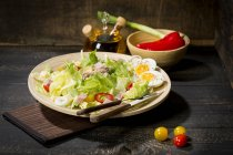 Plate of butterhead lettuce with boiled egg, spring onions, red bell pepper and tuna — Stock Photo