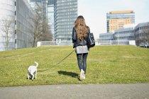Femme promenant son chien — Photo de stock