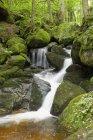 Водопад с валунами, заросшими мхом — стоковое фото