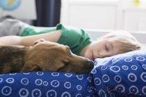 Мальчик и собака, лежа на кровати, спальные, крупным планом вид — стоковое фото