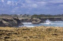 Caribbean, Antilles, Lesser Antilles, Barbados, Atlantic Ocean, Rocky coast — Stock Photo