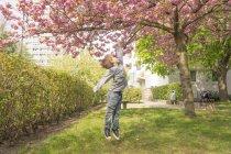 Цветок вишни, мальчик прыгает под дерево — стоковое фото