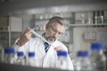Scienziato che versa liquido in provetta — Foto stock