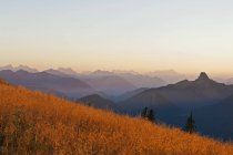 Germany, Upper Bavaria, Tegernsee, View from Wallberg to Bavarian Alps in the evening light — Stock Photo