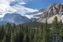 Blick von Eisfeldern Parkway, Banff Nationalpark, britische Columbia, Kanada — Stockfoto