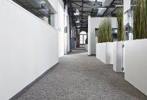 Modern open plan office indoors — Stock Photo