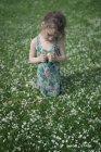 Kleines Mädchen kniet auf Wiese mit verstreuten Apfelblüten und hält Gänseblümchen in den Händen — Stockfoto