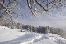 Deutschland, Bayern, Upper Bavaria, Mangfall Berge, Hocheck in der Nähe von Oberaudorf, Aussichtspunkt — Stockfoto