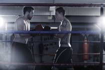 Two boxers starting a fight in boxing ring — Stock Photo