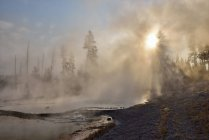 Firehole Feder am Firehole Lake Drive, Yellowstone-Nationalpark, Wyoming, Usa — Stockfoto