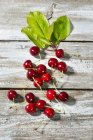 Fresh cherries and leaves — Stock Photo