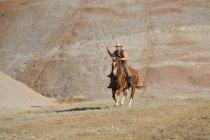 Чоловічий ковбой їзда і розмахуючи ласо — стокове фото
