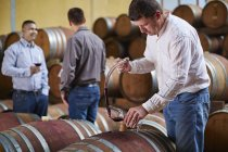 Wine makers tasting wine in wine cellar — Stock Photo