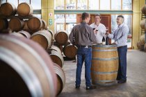 Produtores de vinho degustando vinho na adega — Fotografia de Stock