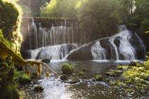 Германия, Бавария, Оллгау, Реттенберг, Герацеровский водопад в лесу — стоковое фото