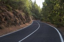 Spain, Tenerife, empty road, forest during daytime — Stock Photo