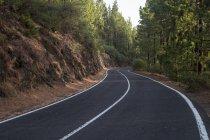 Route de vide Espagne, Tenerife, forêt pendant la journée — Photo de stock