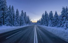 Germany, Lower Saxony, Harz National Park, road in winter — Stock Photo